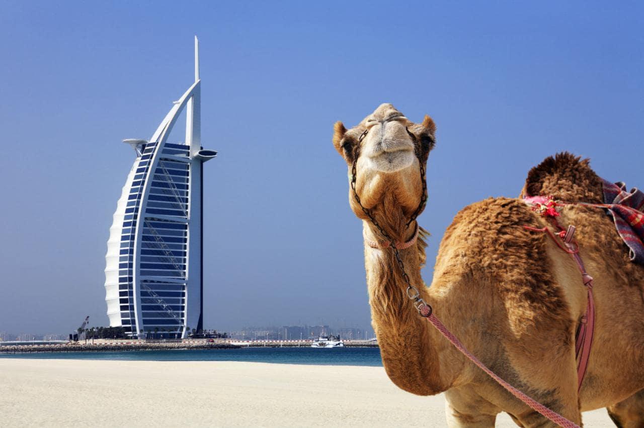 10 motivi per visitare Dubai