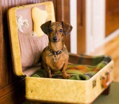 10 MODI per arredare la tua casa con le vecchie valigie.